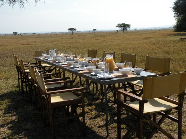 Breakfast Table on the Serengeti