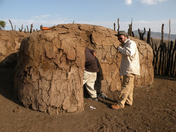 Elephant dung house