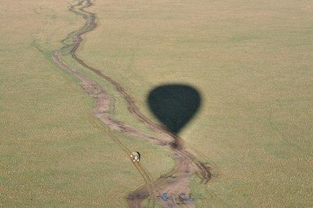 over the Mara - it's a beautiful sight from the balloon