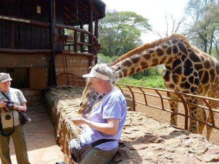 giraffe lovers delight